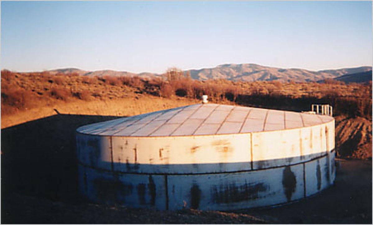 Woods Tank Gallery 0020